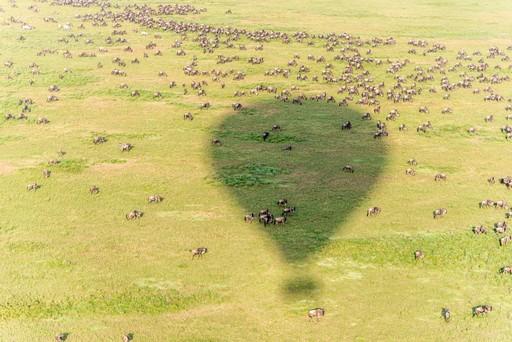 Hot air balloon safari over the Serengeti, South Africa