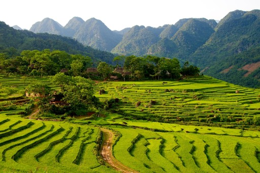 Pu Luong Nature Reserve, Thanh Hoa Province, Vietnam.