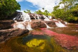 Caño Cristales, Colombia