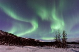 Northern lights over a snowy landscape in Iceland