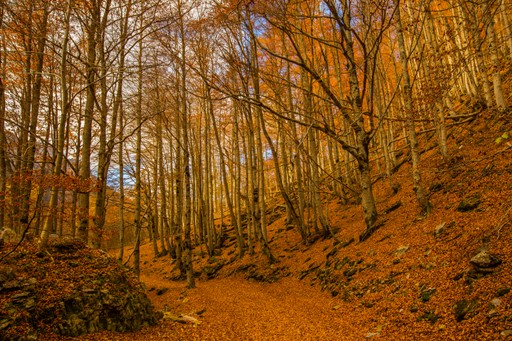 Autumn in Spanish Pyrenees mountains