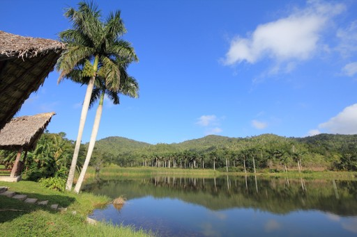 The Las Terrazas Nature Reserve in Cuba