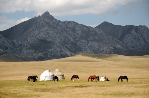 Yurts and horses in Kyrgyzstan