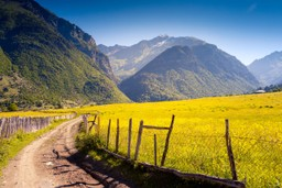 Gorgeous Georgian countryside