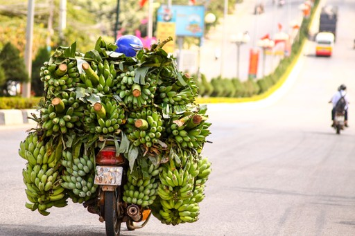Vietnam motorbike covered in bananas