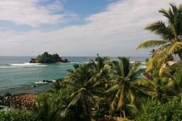 Tropical island off the coast of Mirissa