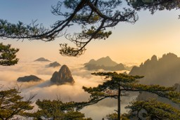 Huangshan mountains China