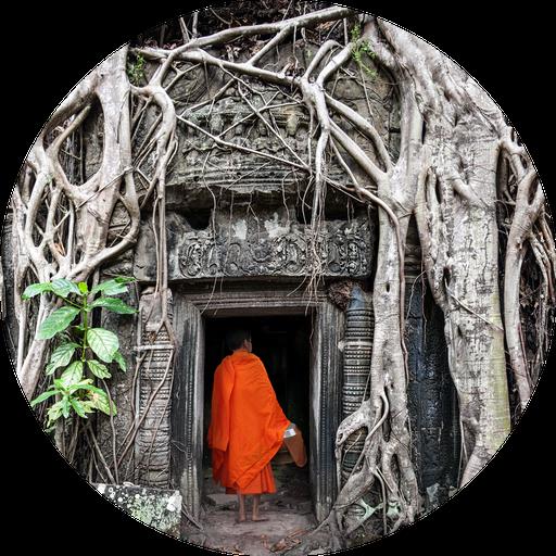 Ta-prohm-angkor-temples
