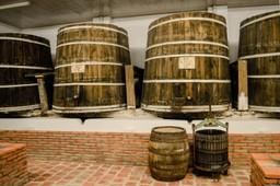 Wine vats in Georgia, Europe